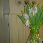 blommor2_efterop_korrekt