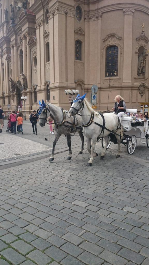 Det finns gott om Hästtaxin i Prag. Fina Ekipage men kan inte annat än tycka synd om hästarna.